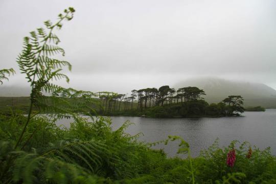 Wicklow National Park, Ireland ©Zanatta