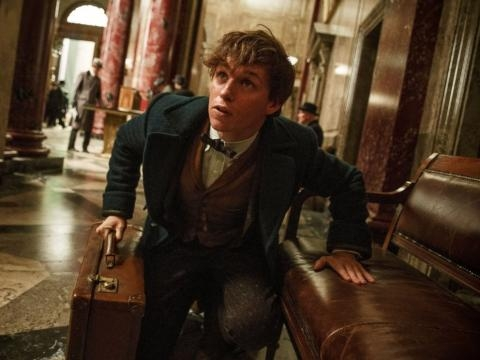Inside the First 'Fantastic Beasts and Where to Find Them' Trailer ... - go.com