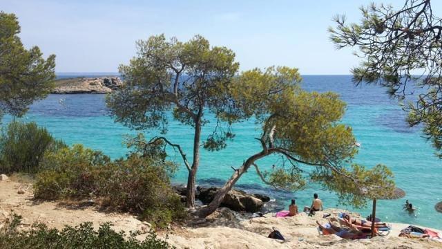 Majorque - île des Baléares - Playa Illetes