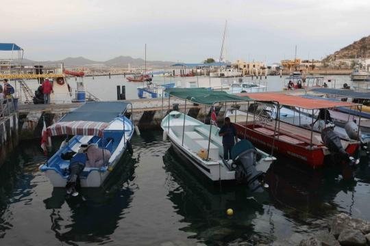 La marina principal de Cabo San Lucas en Baja California Sur.