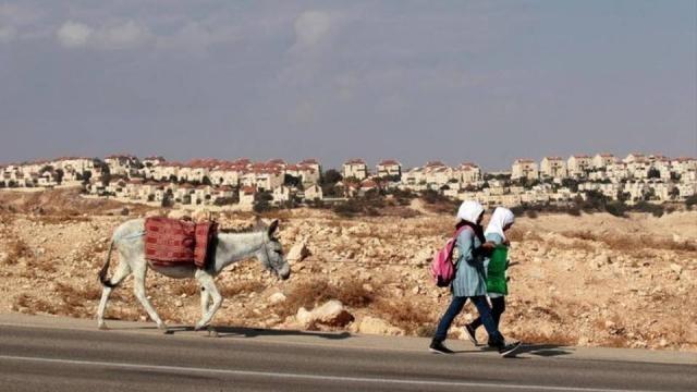 Israel aprueba otras 300 viviendas en asentamientos en los ... - democracynow.org