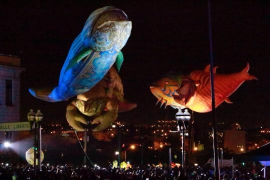 Secrets of the sea festival internacional chihuahua