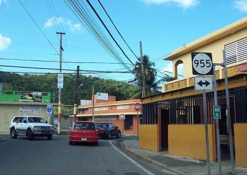 Puerto Rico Highway 191 (Image credit – Ajax Smack – Wikimedia Commons)