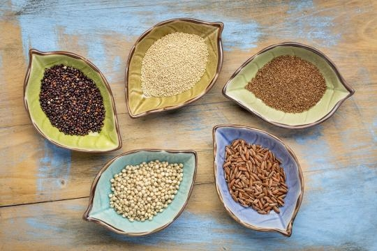 Diversas categorías de cereales que no contienen la gluteína.