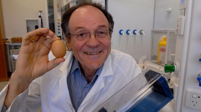Australian scientist wins Ig Nobel for essentially un-boiling an egg - mashable.com