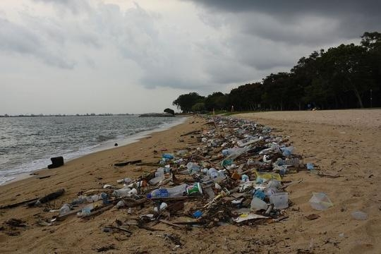 Plastic waste pollution on the beach. (Image via Vaidehi Shah / Wikimedia Commons)