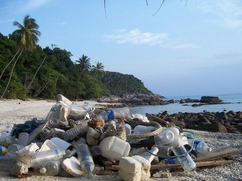 Trash accumulation on the beach. (Image via Colocho / Wikimedia Commons)
