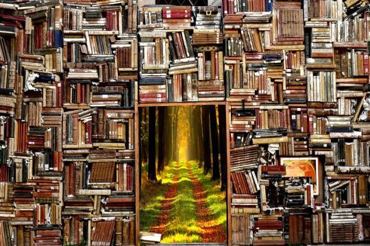 Library to Fantasy-Land (Image via: pixabay.com)