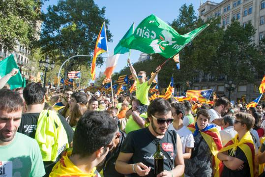 Supporters of Ireland's Sinn Fein party at a pro-independence rally.