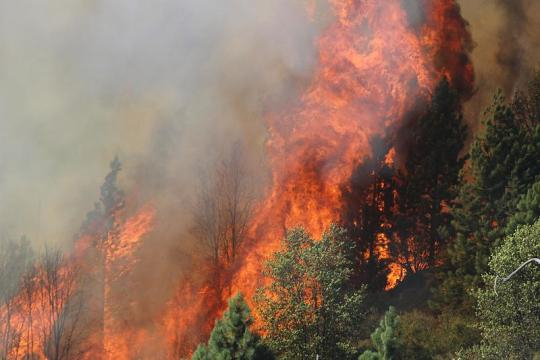 The Rim Fire in the Stanislaus National Forest near California (Image credit - Mike McMillan, Wikimedia Commons)