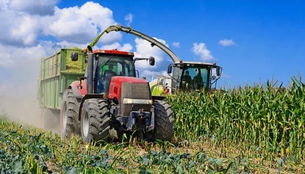 Producción de maíz en Estados Unidos