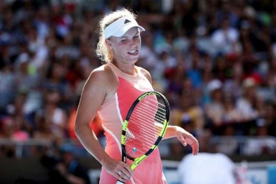 Caroline Wozniacki has had a good week in Doha despite losing in final to Karolina Pliskova picture courtesy of news18.com