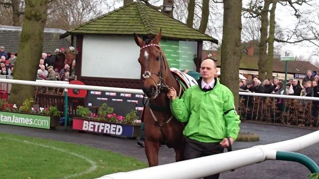 The New One at his favourite track - Haydock prior to winning the Champion Hurdle Trial. Can he now win the main event?