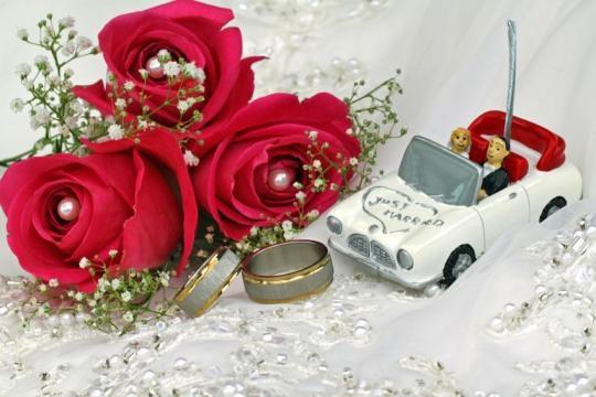 hochzeit bilder   Wedding Portal - ipnodns.ru