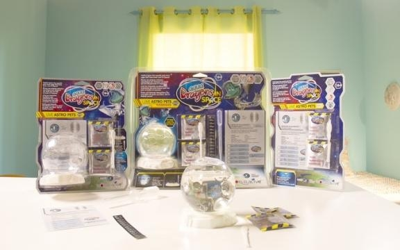 Many of the forthcoming World Alive 'Aqua Dragon' kits will have space themes. / Photo via Amy Holden, World Alive. Used with permission.