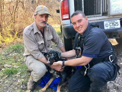 Dog stuck on a cliff successfully rescued - ABC 36 News - wtvq.com