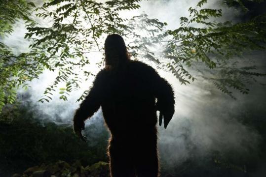 Idaho woman says she crashed after she saw Bigfoot. - chron.com