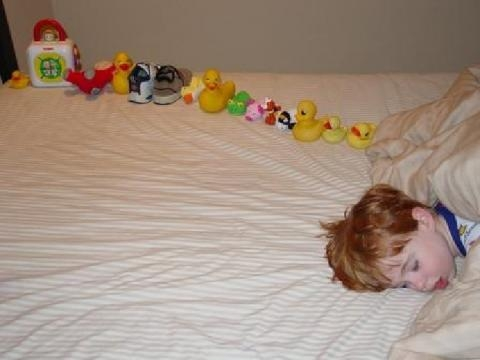 A child with autism sleeps beside toys he as arranged in typically autistic fashion / Andwhatsnext, Wikimedia Commons CC BY-SA 3.0