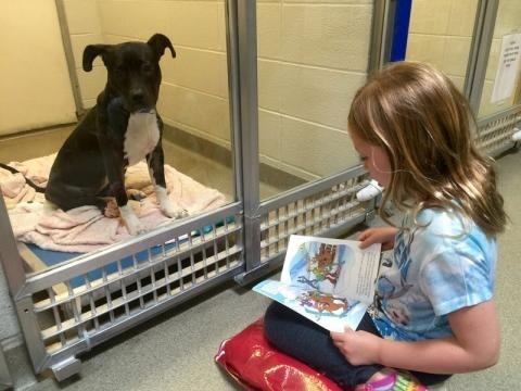Children Read To Abandoned And Lonely Dogs For One Amazing Reason… - sweetpets.tv