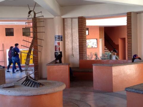 La UNISON tiene entre sus programas una rama dedicada a las Bellas Artes.
