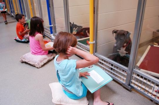 These Kids Reading to Shelter Dogs Will Make Your Day | Rover.com - rover.com