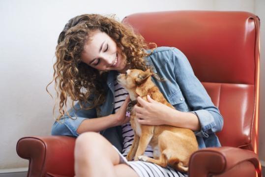 Do You Love Your Dog More Than Humans?   Wellness   US News - usnews.com