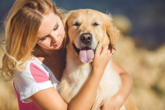 Why dogs don't like to be hugged   MNN - Mother Nature Network - mnn.com