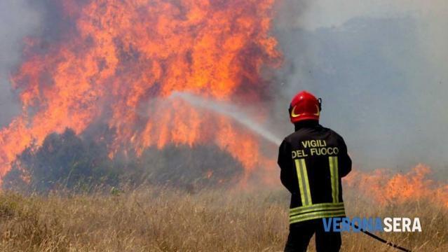 Vigili del fuoco, annunciate nuove assunzioni e una sede a San ... - allnews24.org