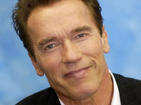 Arnold Schwarzenegger Biography - Childhood, Life Achievements ... - thefamouspeople.com