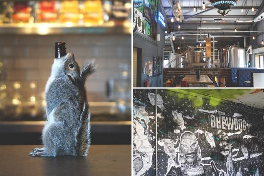 BrewDog is Crowdfunding a Sour Brewery and Hotel in Ohio — Good ... - goodbeerhunting.com
