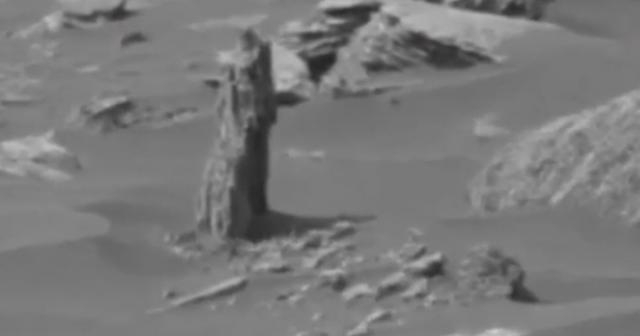 UFO hunter claims 'Martian tree' seen on Mars in Curiosity Rover ... - mirror.co.uk