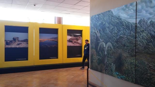 Tómese la foto en el Museo del Desierto de Saltillo.
