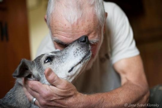 I Photograph The Special Bond Between Dogs And The People Who ... - veriy.com