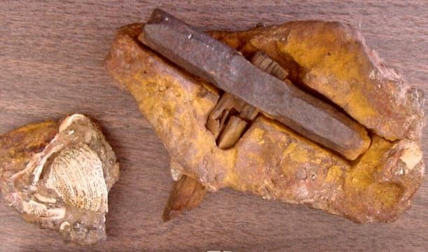 The 400 million year old hammer - ancient-code.com