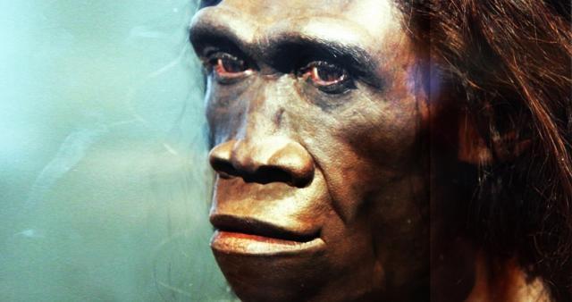 Year Old Homo Erectus Footprints Found in Eritrea - newhistorian.com