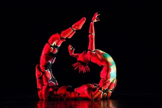 MOMIX often combines stories and music with circus-like acrobatics. / Photo via Moses Pendleton, used with permission.