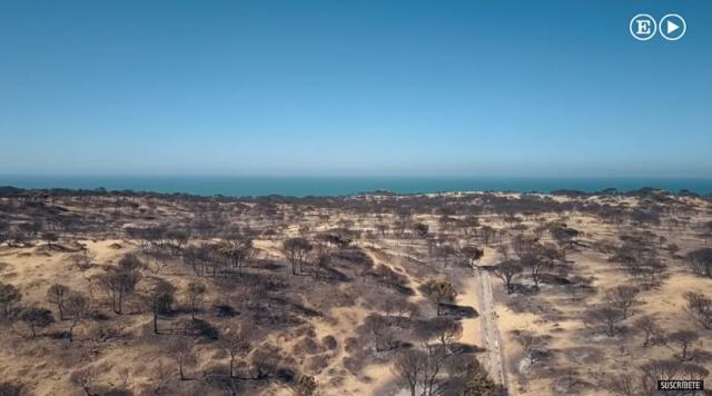 Photo devastation in the national park following the fire screen capture from YouTube video / El Pais