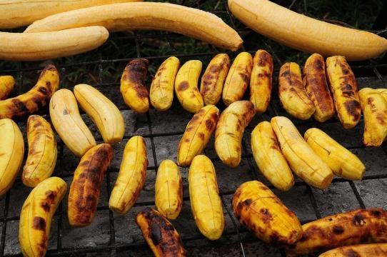 El plátano es el principal alimento en África