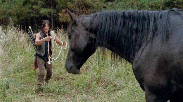 The Walking Dead: Norman Reedus et les chevaux à la base c'était pas gagné...