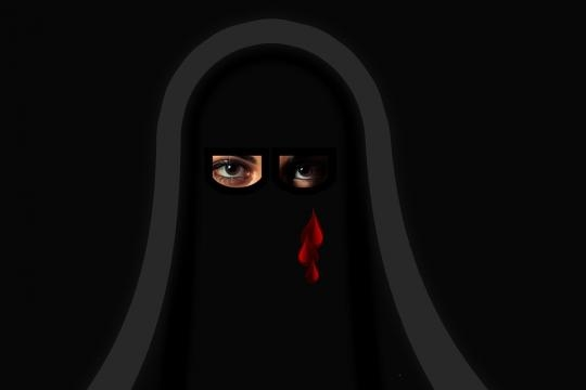 The closed world of Muslim women.photo pixabay.com/en/niqab-religion-woman-muslim-girl-2521730/
