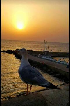 Bellissimo tramonto salentino. Foto Stefano D. F.