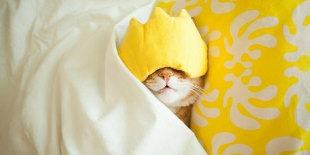 Toutes les méthodes pour s'endormir rapidement - Marie Claire - marieclaire.fr
