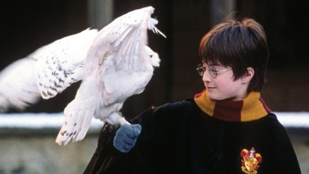 Harry Potter': Every Magical Creature Shown in the Movies ... - hollywoodreporter.com