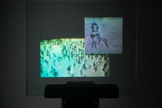 Mostly any image can be turned into a hologram with the right equipment. / Photo via Patrick Boyd, used with permission.