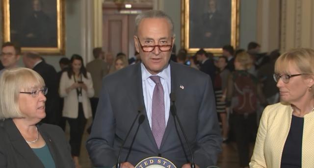 Senate Minority Leader Chuck Schumer after GOP block grant repeal failure. [Image via PBS Newshour /YouTube]