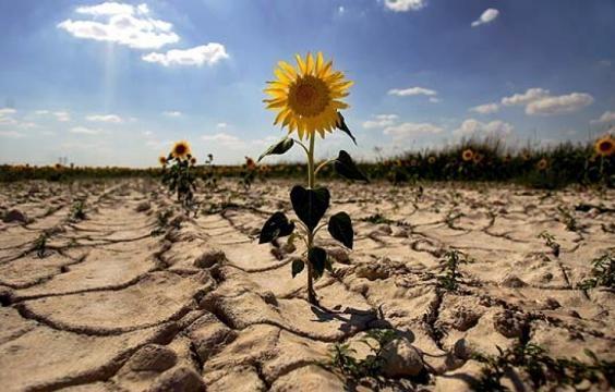 Conoce más sobre el Cambio Climático - America Verde - americaverde.org