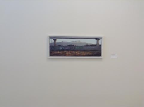 La pintura contemporánea regresa al paisajismo destacando la inserción urbana a la estética.