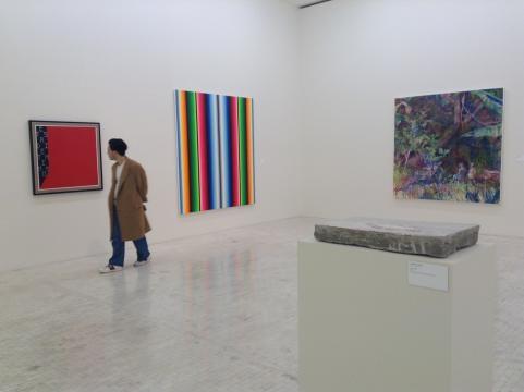 No hay sorpresas en la selección de la Bienal que se exhibe en el Tamayo.