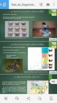 imagen del protocolo de estudio de los lepidópteros BMS