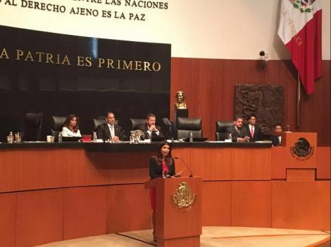 El Senado de la República debe controlar mejor el actuar de la SRE y del canciller - gob.mx